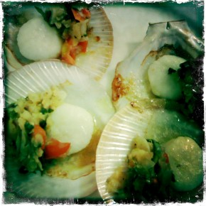 First course - scallops